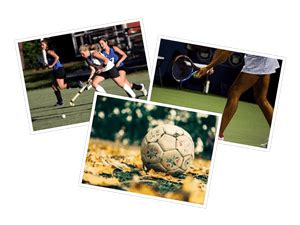 Essay on autobiography of a football in english
